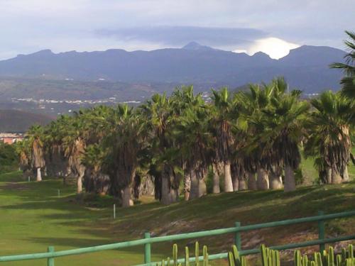 Tenerife 13.